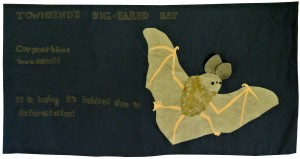 Townsend's Big-Earred Bat by Lindsay, Kasey, Sebastian, and Daniel. Ms Harada's 6th grade class, 2014, Thomas Starr King Middle School. Faux fur and fabric appliqué with rubber stamps.